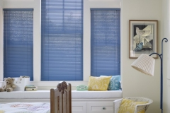 window-blinds