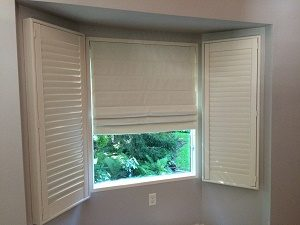 Bay window with blinds and shades
